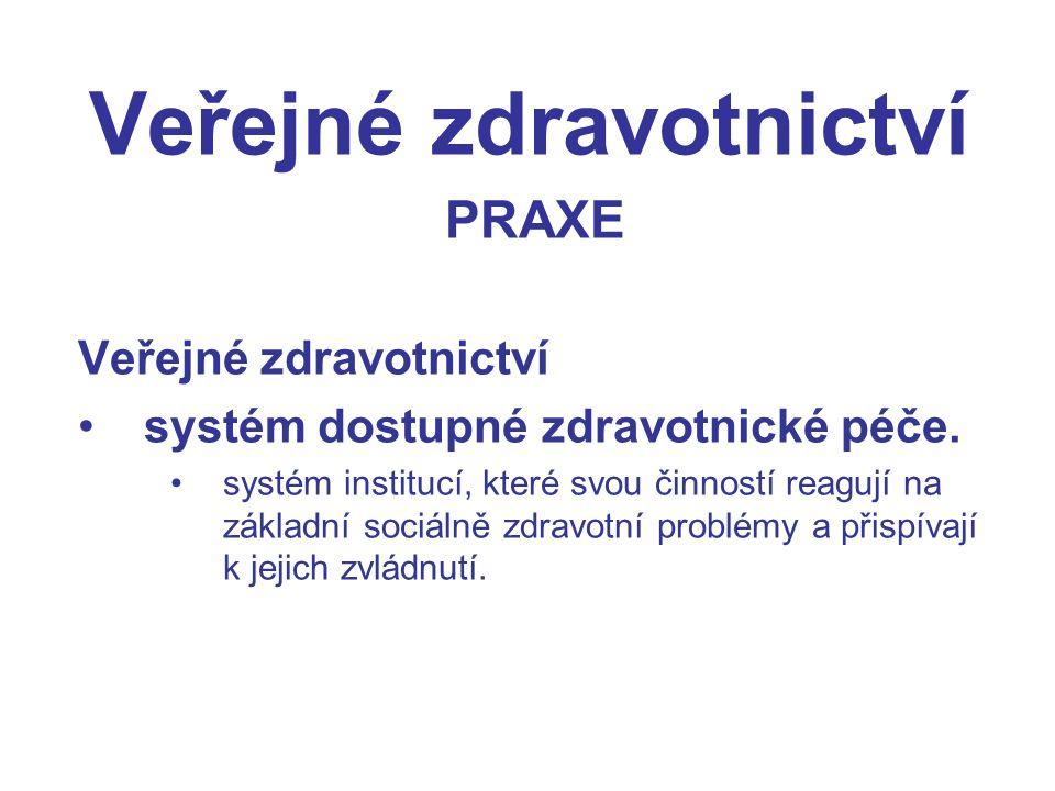 Veřejné zdravotnictví PRAXE Veřejné zdravotnictví systém dostupné zdravotnické péče.