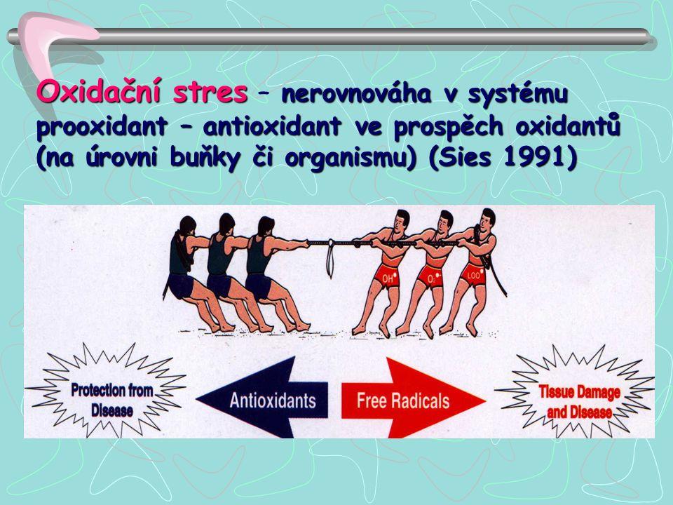 Oxidační stres nerovnováha v systému prooxidant – antioxidant ve prospěch oxidantů (na úrovni buňky či organismu) (Sies 1991) Oxidační stres – nerovno