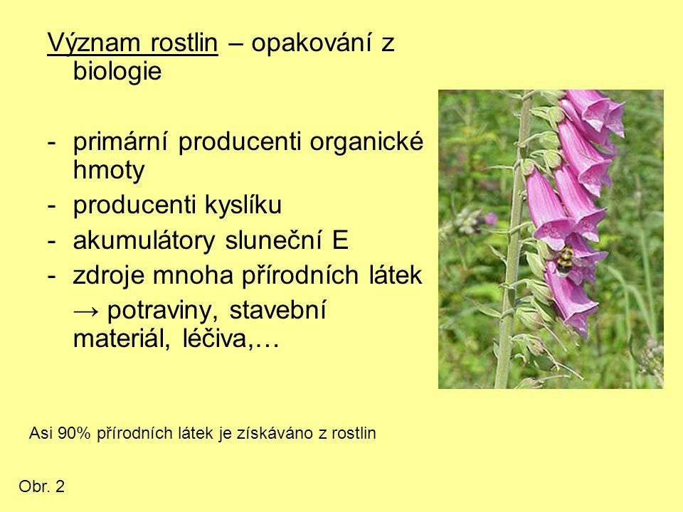 Význam rostlin – opakování z biologie -primární producenti organické hmoty -producenti kyslíku -akumulátory sluneční E -zdroje mnoha přírodních látek