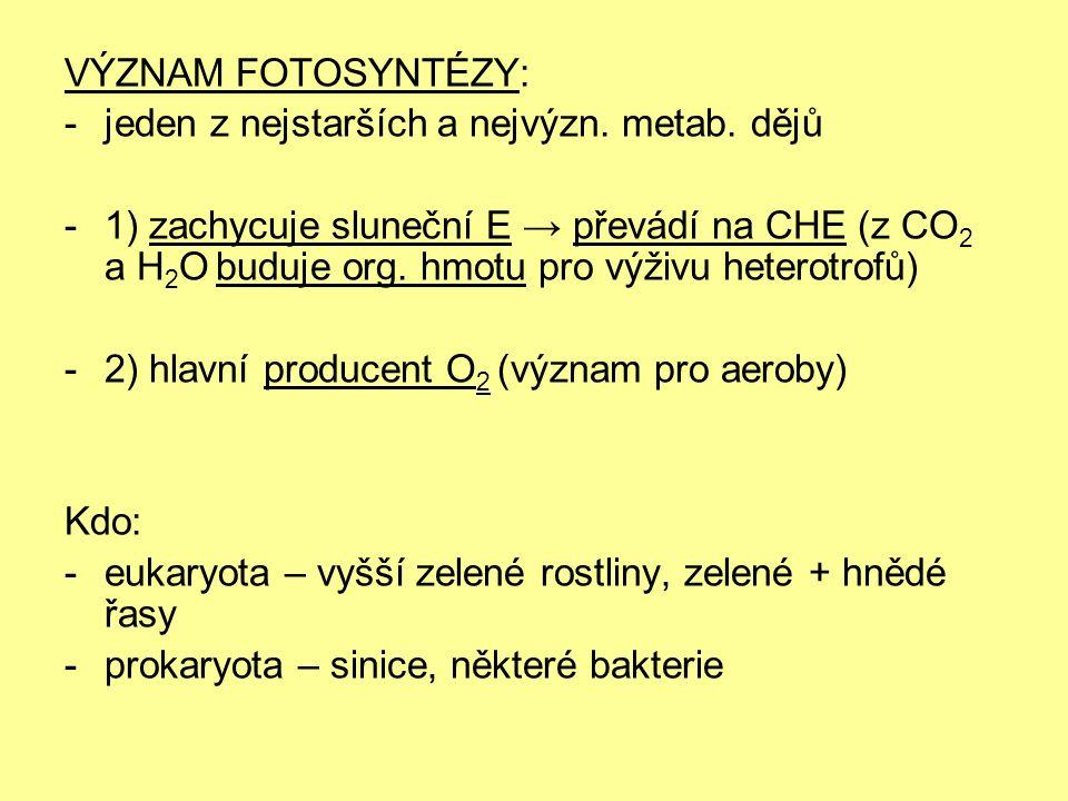 VÝZNAM FOTOSYNTÉZY: -jeden z nejstarších a nejvýzn. metab. dějů -1) zachycuje sluneční E → převádí na CHE (z CO 2 a H 2 O buduje org. hmotu pro výživu