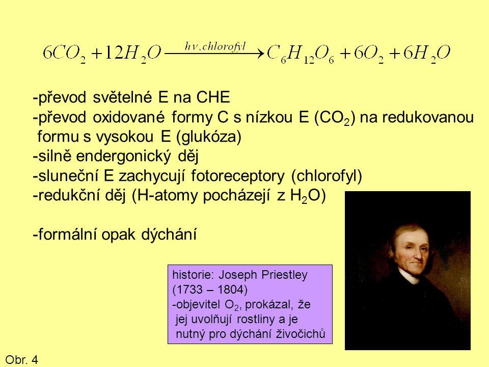 -převod světelné E na CHE -převod oxidované formy C s nízkou E (CO 2 ) na redukovanou formu s vysokou E (glukóza) -silně endergonický děj -sluneční E zachycují fotoreceptory (chlorofyl) -redukční děj (H-atomy pocházejí z H 2 O) -formální opak dýchání historie: Joseph Priestley (1733 – 1804) -objevitel O 2, prokázal, že jej uvolňují rostliny a je nutný pro dýchání živočichů Obr.