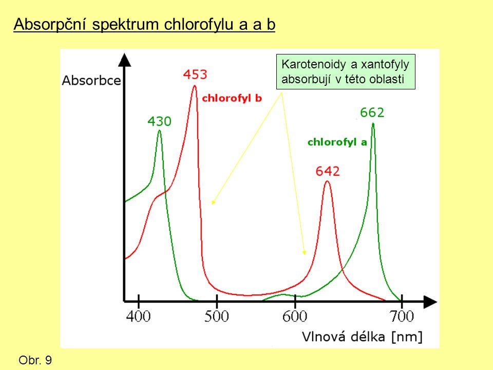 Absorpční spektrum chlorofylu a a b Obr. 9 Karotenoidy a xantofyly absorbují v této oblasti