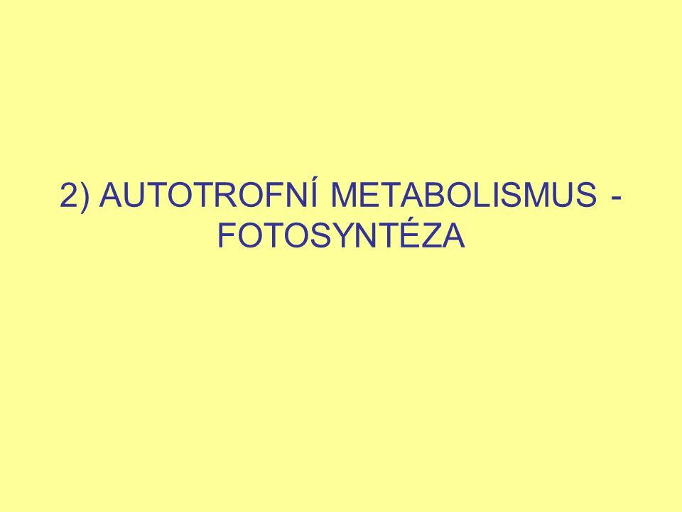 2) AUTOTROFNÍ METABOLISMUS - FOTOSYNTÉZA