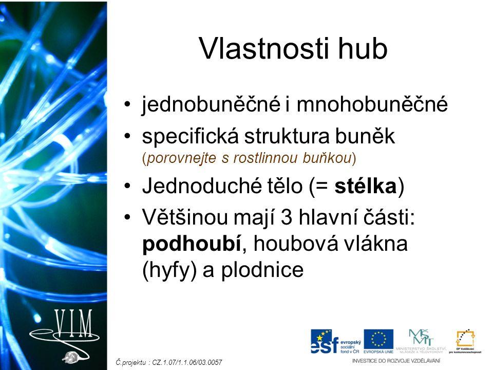 Č.projektu : CZ.1.07/1.1.06/03.0057 Vlastnosti hub jednobuněčné i mnohobuněčné specifická struktura buněk (porovnejte s rostlinnou buňkou) Jednoduché