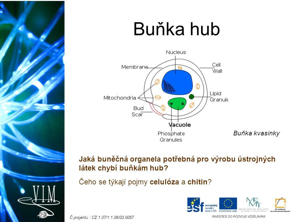 Č.projektu : CZ.1.07/1.1.06/03.0057 Buňka hub Jaká buněčná organela potřebná pro výrobu ústrojných látek chybí buňkám hub? Čeho se týkají pojmy celuló