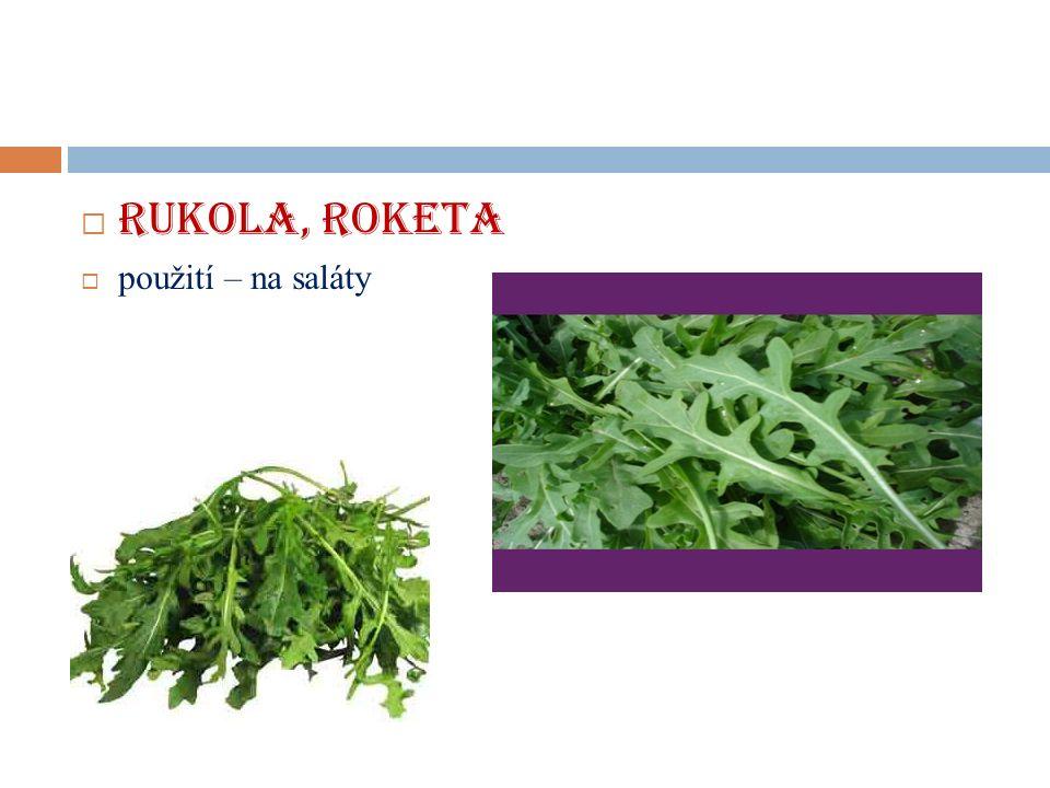  RUKOLA, ROKETA  použití – na saláty