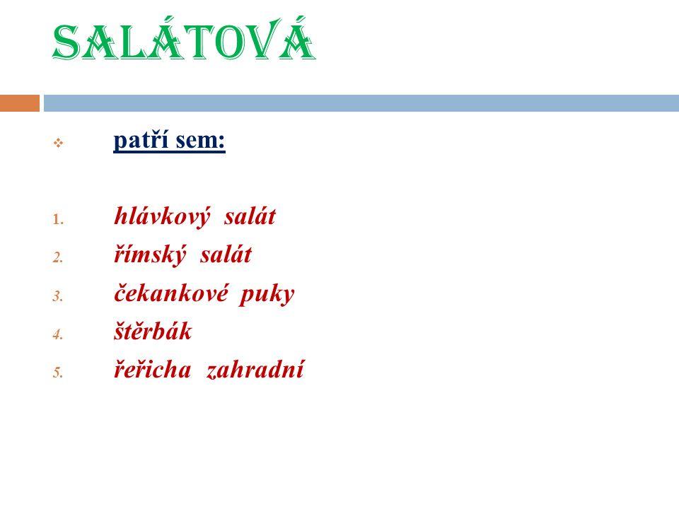 SALÁTOVÁ  patří sem: 1. hlávkový salát 2. římský salát 3.