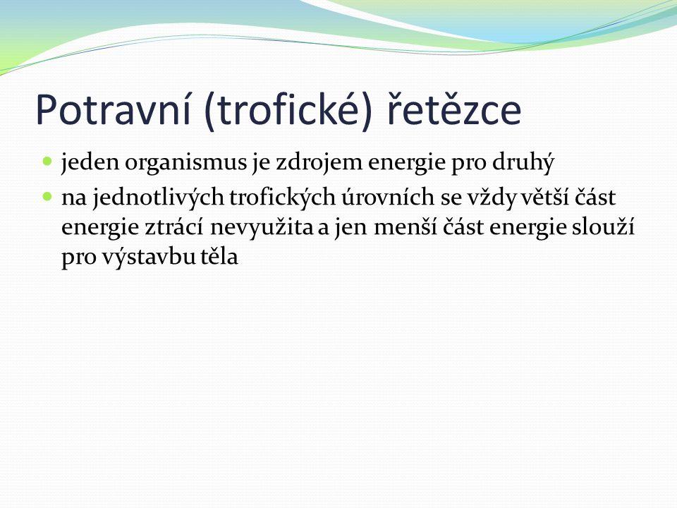 Základní typy potravních řetězců: pastevně kořistnický tvořen producenty (zelené autotrofní rostliny)- konzumenti I.