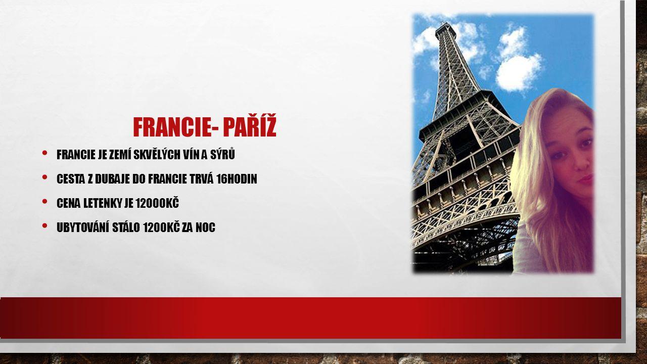 FRANCIE- PAŘÍŽ FRANCIE JE ZEMÍ SKVĚLÝCH VÍN A SÝRŮ CESTA Z DUBAJE DO FRANCIE TRVÁ 16HODIN CENA LETENKY JE 12000KČ UBYTOVÁNÍ STÁLO 1200KČ ZA NOC