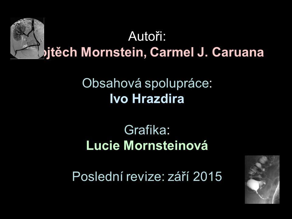 Autoři: Vojtěch Mornstein, Carmel J. Caruana Obsahová spolupráce: Ivo Hrazdira Grafika: Lucie Mornsteinová Poslední revize: září 2015