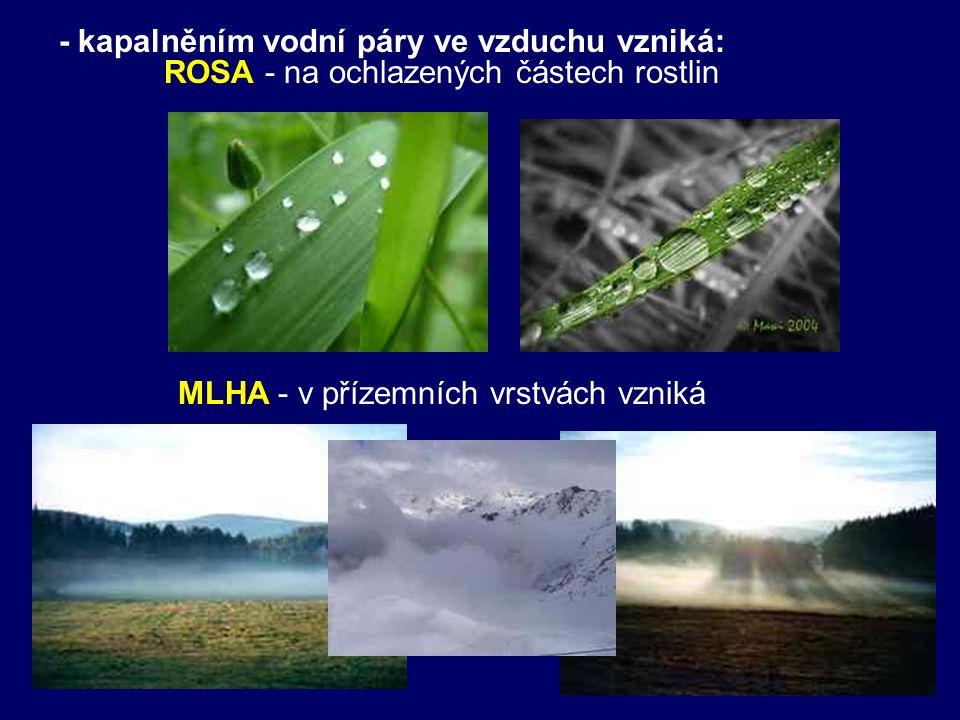 - kapalněním vodní páry ve vzduchu vzniká: ROSA - na ochlazených částech rostlin MLHA - v přízemních vrstvách vzniká