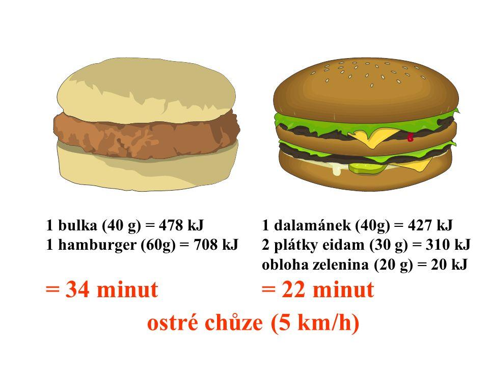 1 bulka (40 g) = 478 kJ 1 hamburger (60g) = 708 kJ = 34 minut 1 dalamánek (40g) = 427 kJ 2 plátky eidam (30 g) = 310 kJ obloha zelenina (20 g) = 20 kJ = 22 minut ostré chůze (5 km/h)