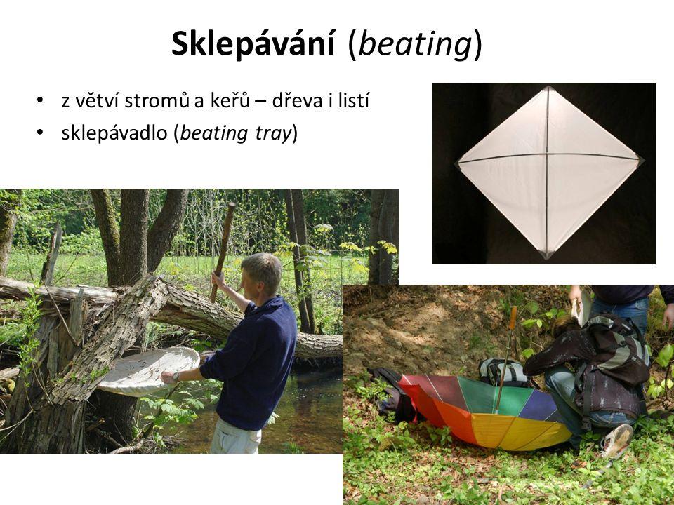 Sklepávání (beating) z větví stromů a keřů – dřeva i listí sklepávadlo (beating tray)