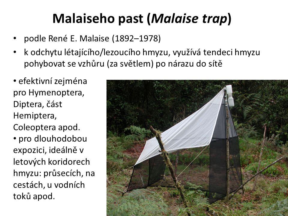 Malaiseho past (Malaise trap) podle René E.