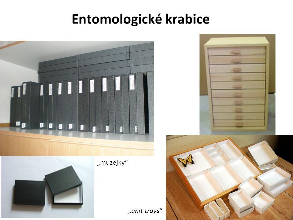 """Entomologické krabice """"muzejky """"unit trays"""