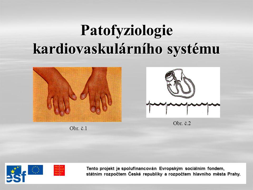Patofyziologie kardiovaskulárního systému Obr. č.1 Obr.