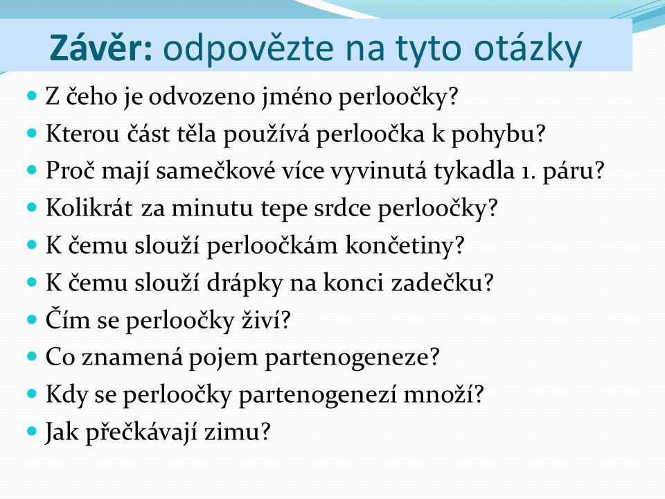Závěr: odpovězte na tyto otázky Z čeho je odvozeno jméno perloočky? Kterou část těla používá perloočka k pohybu? Proč mají samečkové více vyvinutá tyk
