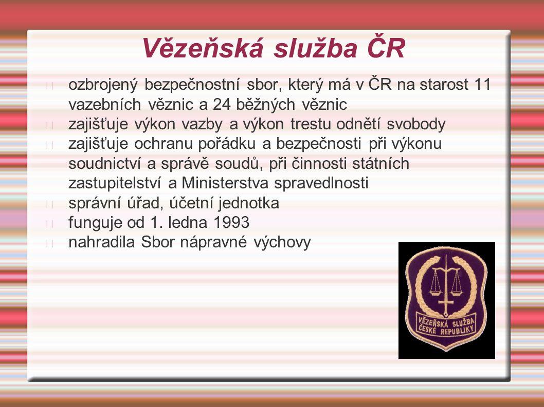 Vězeňská služba ČR ozbrojený bezpečnostní sbor, který má v ČR na starost 11 vazebních věznic a 24 běžných věznic zajišťuje výkon vazby a výkon trestu odnětí svobody zajišťuje ochranu pořádku a bezpečnosti při výkonu soudnictví a správě soudů, při činnosti státních zastupitelství a Ministerstva spravedlnosti správní úřad, účetní jednotka funguje od 1.