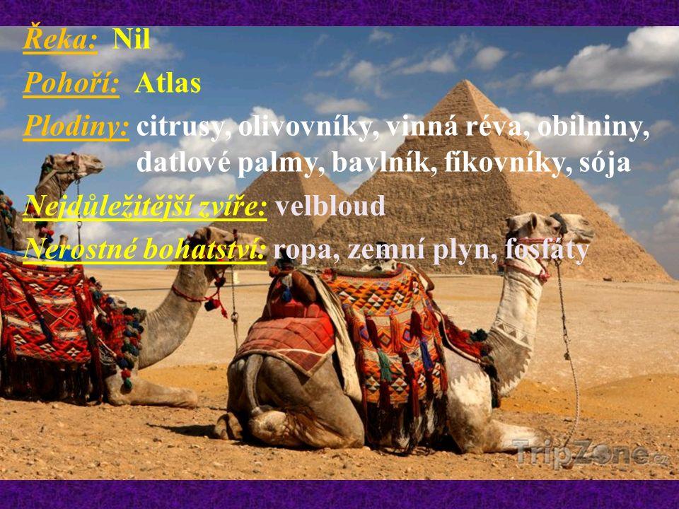 Řeka: Nil Pohoří: Atlas Plodiny: citrusy, olivovníky, vinná réva, obilniny, datlové palmy, bavlník, fíkovníky, sója Nejdůležitější zvíře: velbloud Nerostné bohatství: ropa, zemní plyn, fosfáty