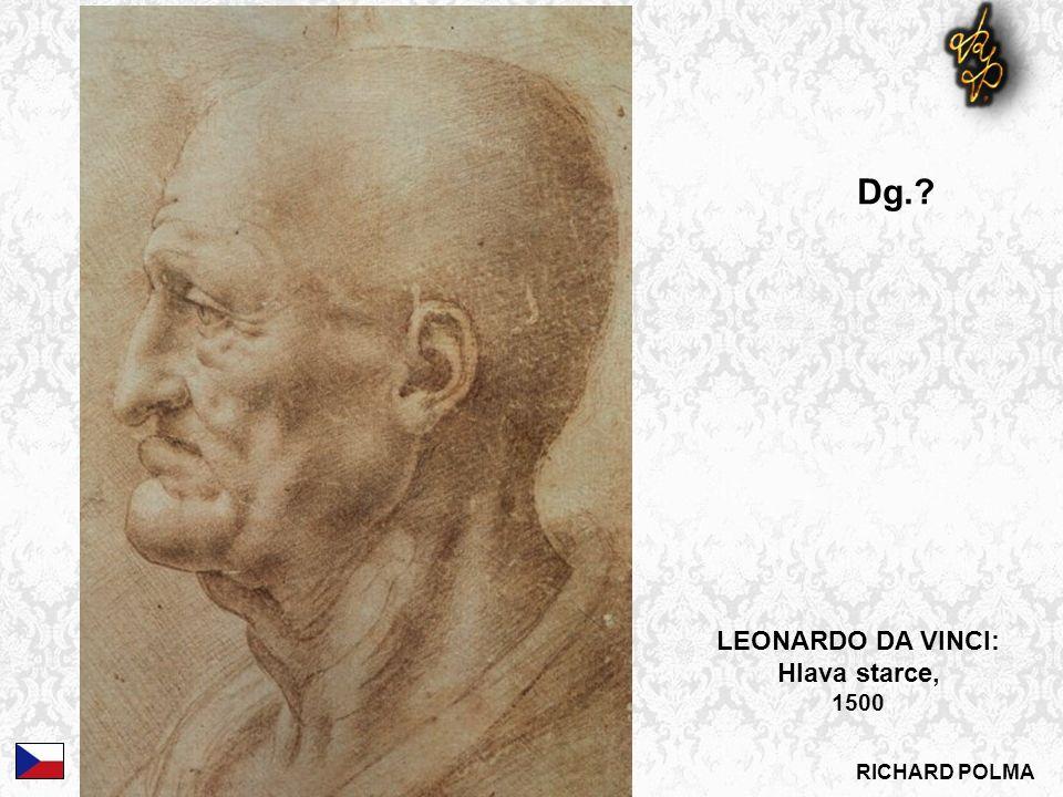 LEONARDO DA VINCI: Hlava starce, 1500 Dg.