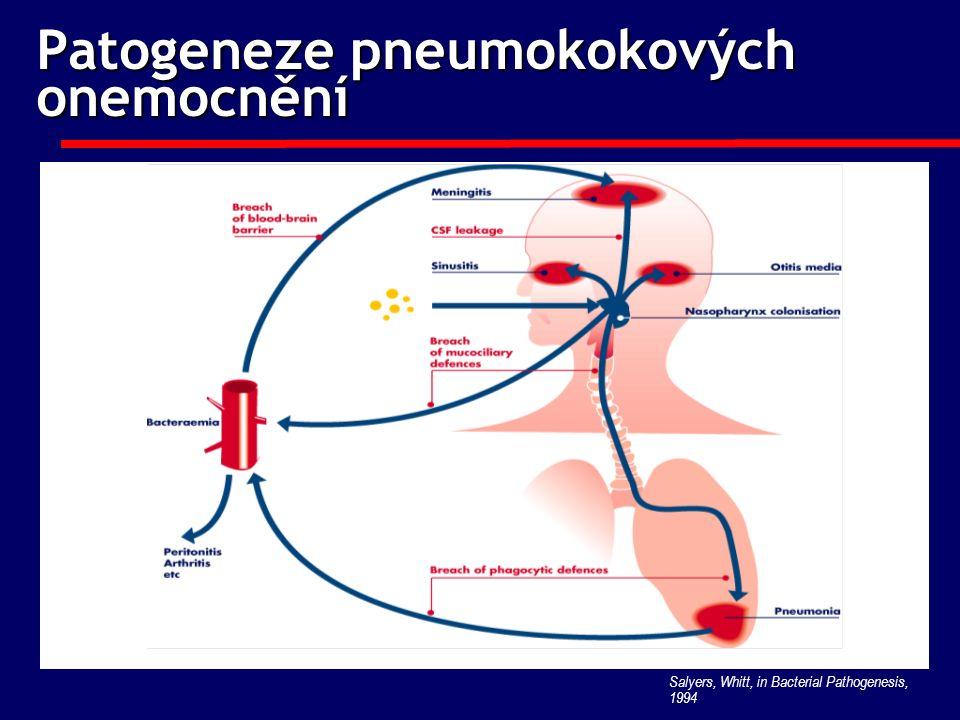 Patogeneze pneumokokových onemocnění Salyers, Whitt, in Bacterial Pathogenesis, 1994