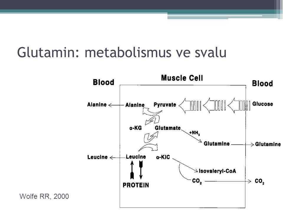 Glutamin: metabolismus ve svalu Wolfe RR, 2000