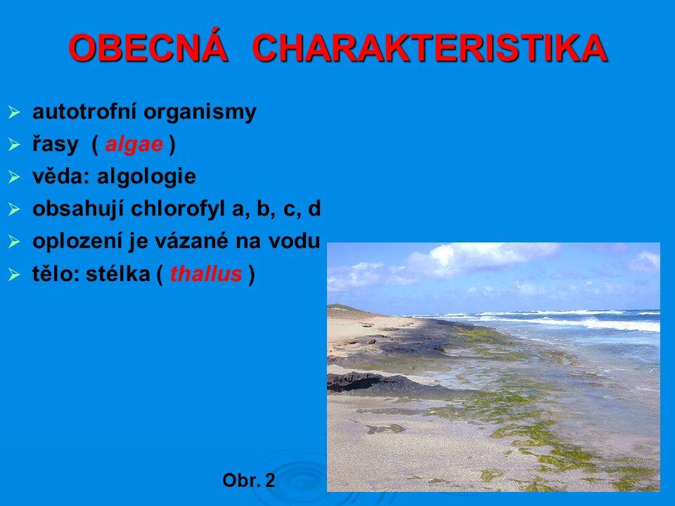 OBECNÁ CHARAKTERISTIKA  autotrofní organismy  řasy ( algae )  věda: algologie  obsahují chlorofyl a, b, c, d  oplození je vázané na vodu  tělo: