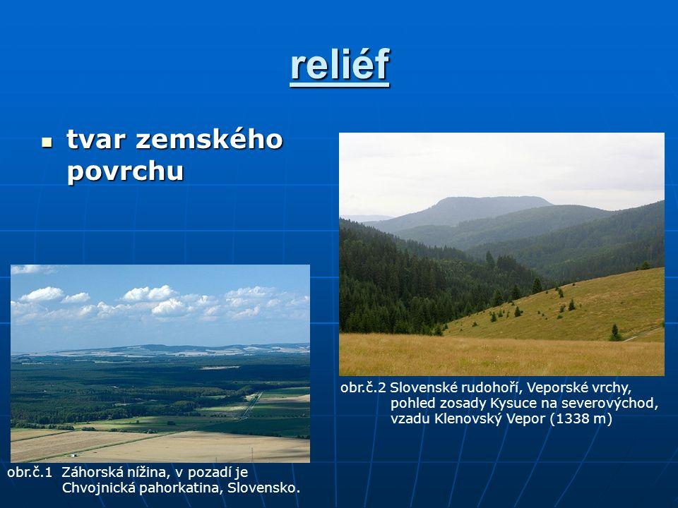 reliéf tvar zemského povrchu tvar zemského povrchu obr.č.1 Záhorská nížina, v pozadí je Chvojnická pahorkatina, Slovensko.