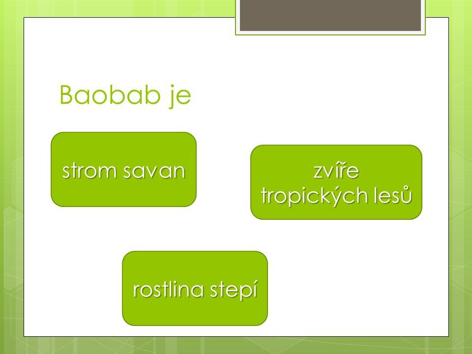 Baobab je strom savan strom savan rostlina stepí rostlina stepí zvíře tropických lesů zvíře tropických lesů