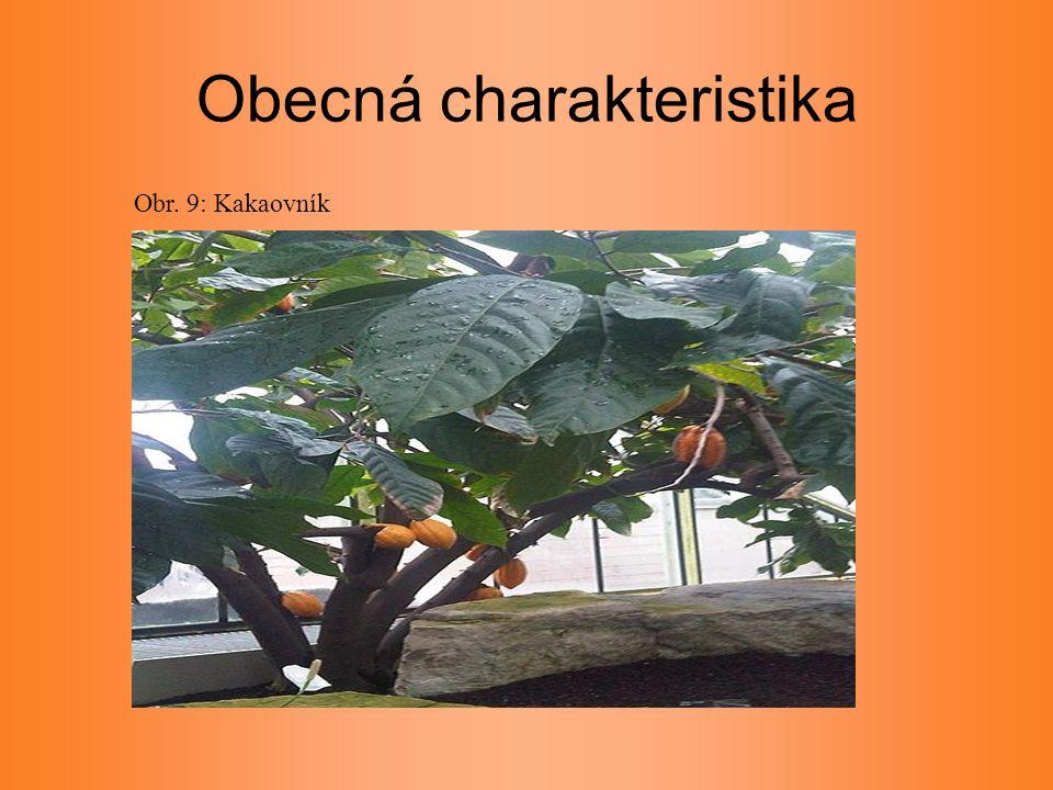 Obecná charakteristika Obr. 9: Kakaovník