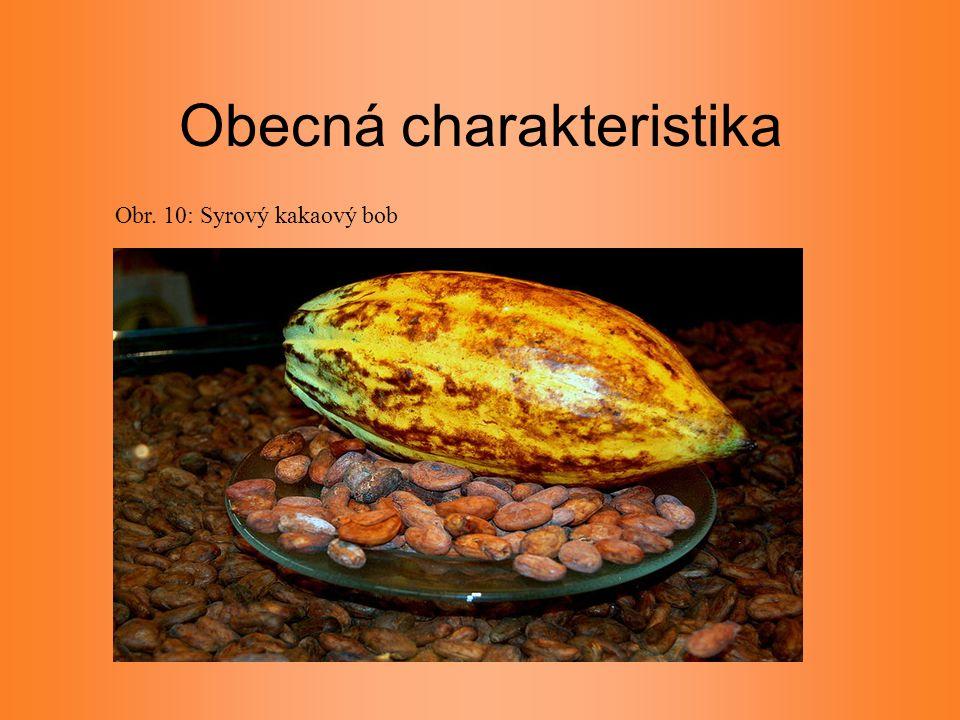 Obecná charakteristika Obr. 10: Syrový kakaový bob