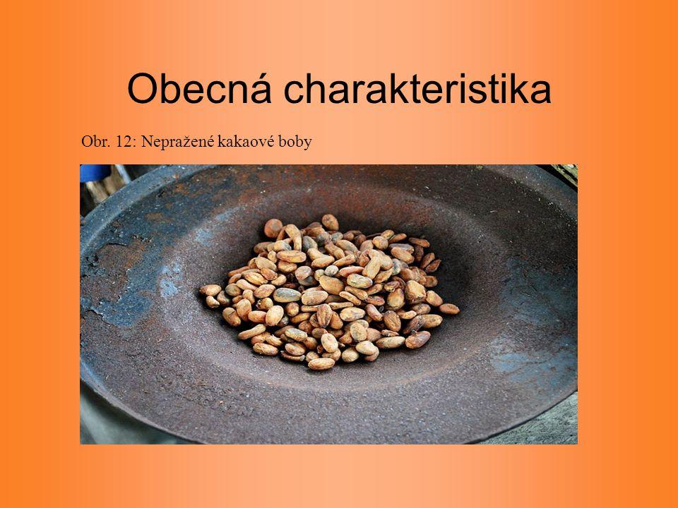 Obecná charakteristika Obr. 12: Nepražené kakaové boby