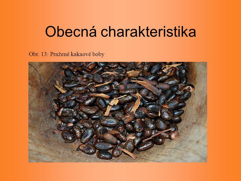 Obecná charakteristika Obr. 13: Pražené kakaové boby