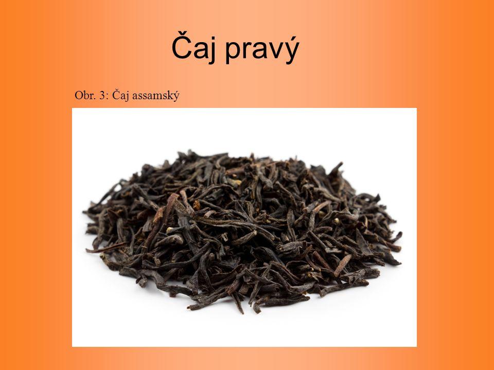 Čaj pravý Obr. 3: Čaj assamský