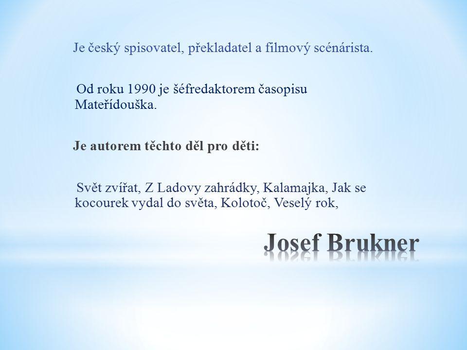 Je český spisovatel, překladatel a filmový scénárista.