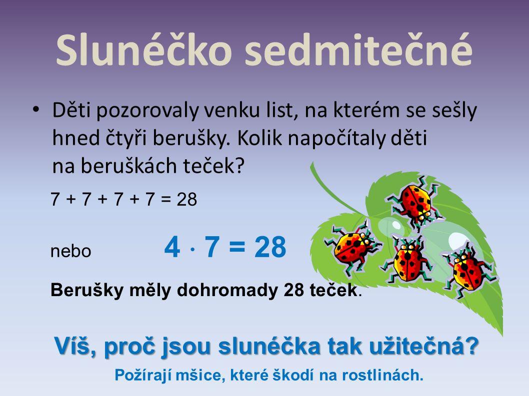 Slunéčko sedmitečné Děti pozorovaly venku list, na kterém se sešly hned čtyři berušky. Kolik napočítaly děti na beruškách teček? 7 + 7 + 7 + 7 = 28 ne