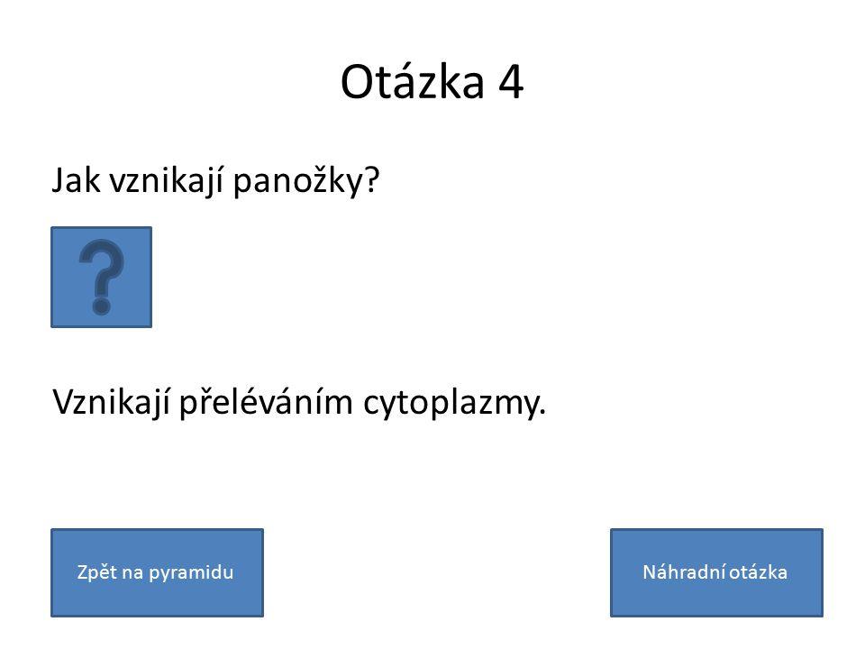 Otázka 4 Jak vznikají panožky? Vznikají přeléváním cytoplazmy. Zpět na pyramiduNáhradní otázka