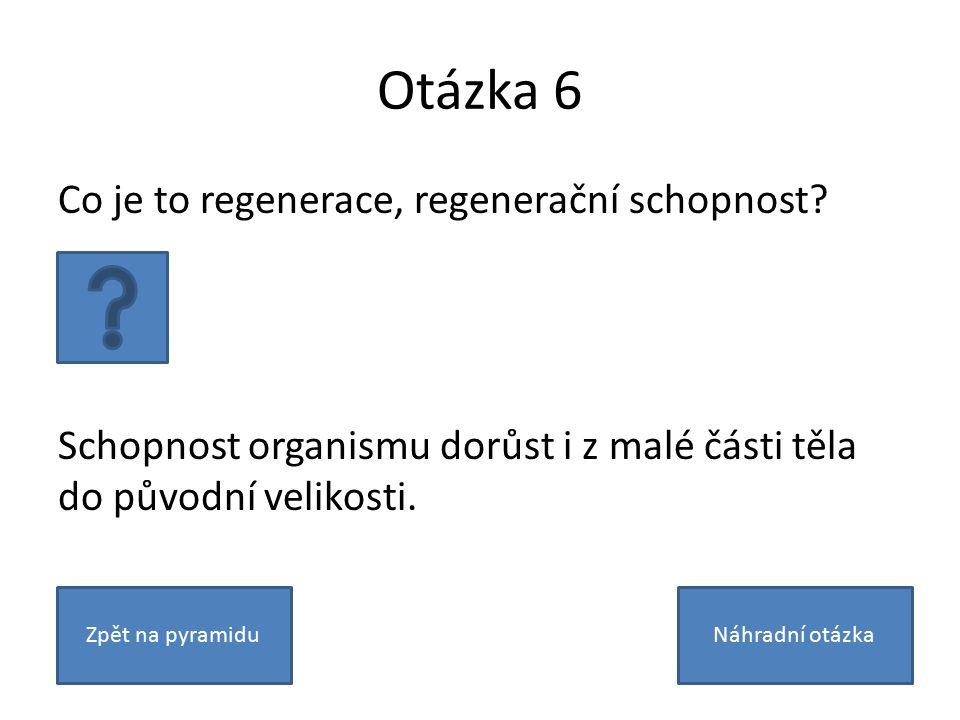 Otázka 6 Co je to regenerace, regenerační schopnost? Schopnost organismu dorůst i z malé části těla do původní velikosti. Zpět na pyramiduNáhradní otá