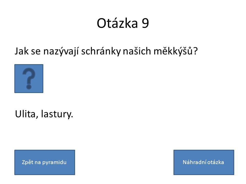 Otázka 9 Jak se nazývají schránky našich měkkýšů? Ulita, lastury. Zpět na pyramiduNáhradní otázka