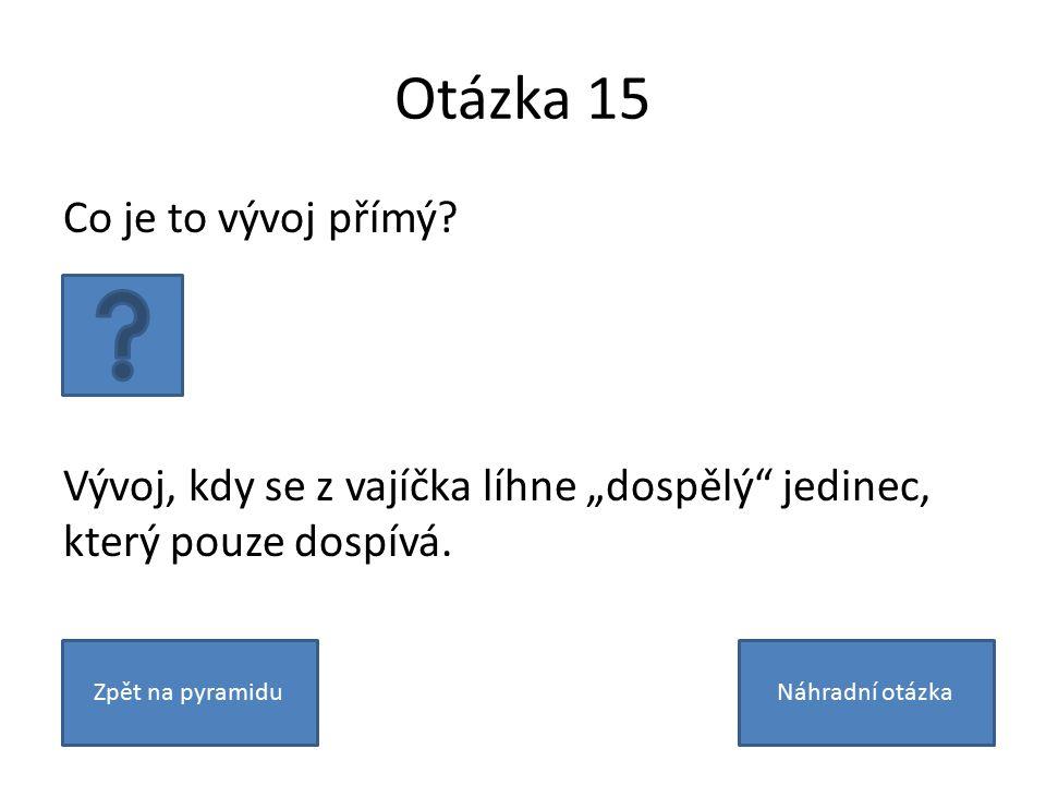 Otázka 15 Co je to vývoj přímý.
