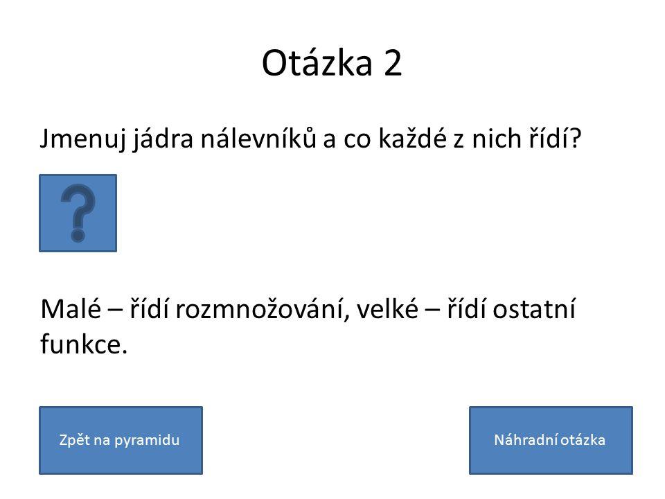 Otázka 2 Jmenuj jádra nálevníků a co každé z nich řídí.