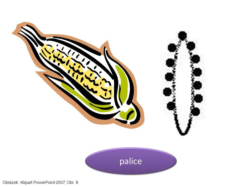 palice Obrázek: Klipart PowerPoint 2007; Obr. 8