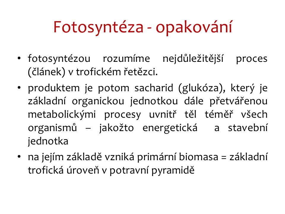 Fotosyntéza - opakování fotosyntézou rozumíme nejdůležitější proces (článek) v trofickém řetězci.