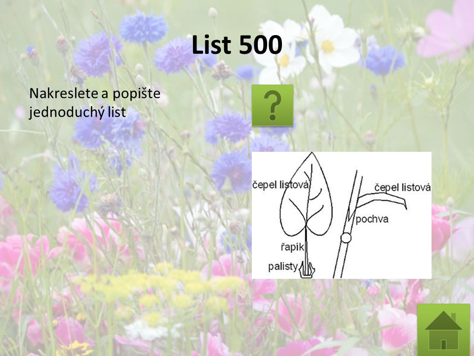 List 500 Nakreslete a popište jednoduchý list
