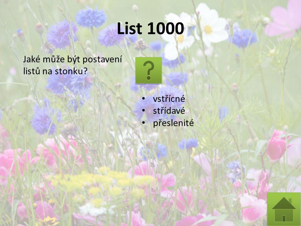List 1000 Jaké může být postavení listů na stonku? vstřícné střídavé přeslenité