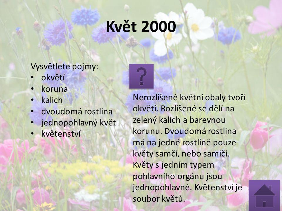 Květ 2000 Vysvětlete pojmy: okvětí koruna kalich dvoudomá rostlina jednopohlavný květ květenství Nerozlišené květní obaly tvoří okvětí. Rozlišené se d