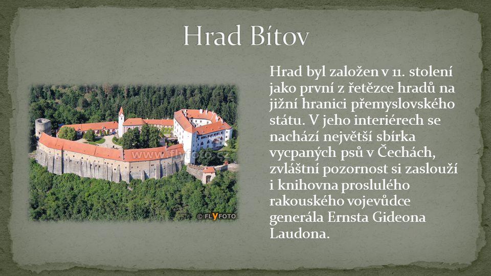 Hrad byl založen v 11. stolení jako první z řetězce hradů na jižní hranici přemyslovského státu. V jeho interiérech se nachází největší sbírka vycpaný
