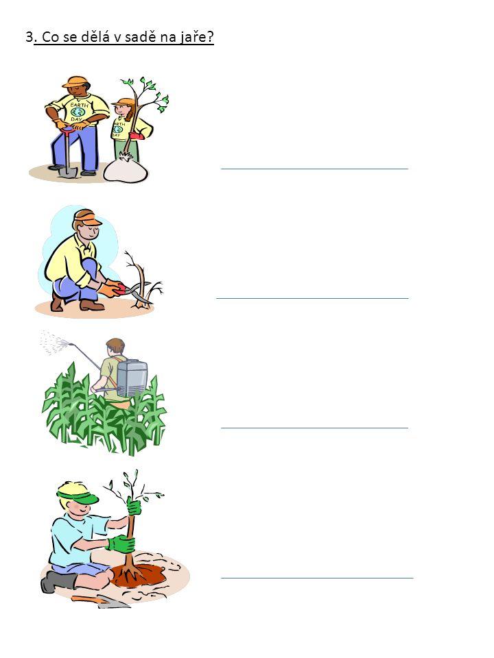 3. Co se dělá v sadě na jaře?