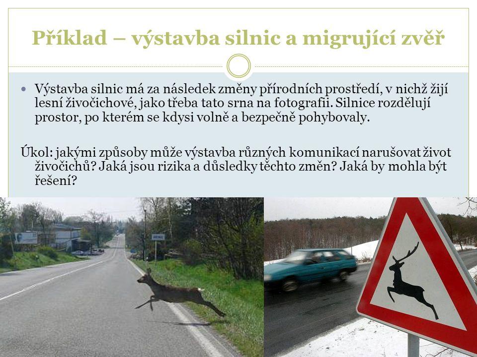 Příklad – výstavba silnic a migrující zvěř Výstavba silnic má za následek změny přírodních prostředí, v nichž žijí lesní živočichové, jako třeba tato