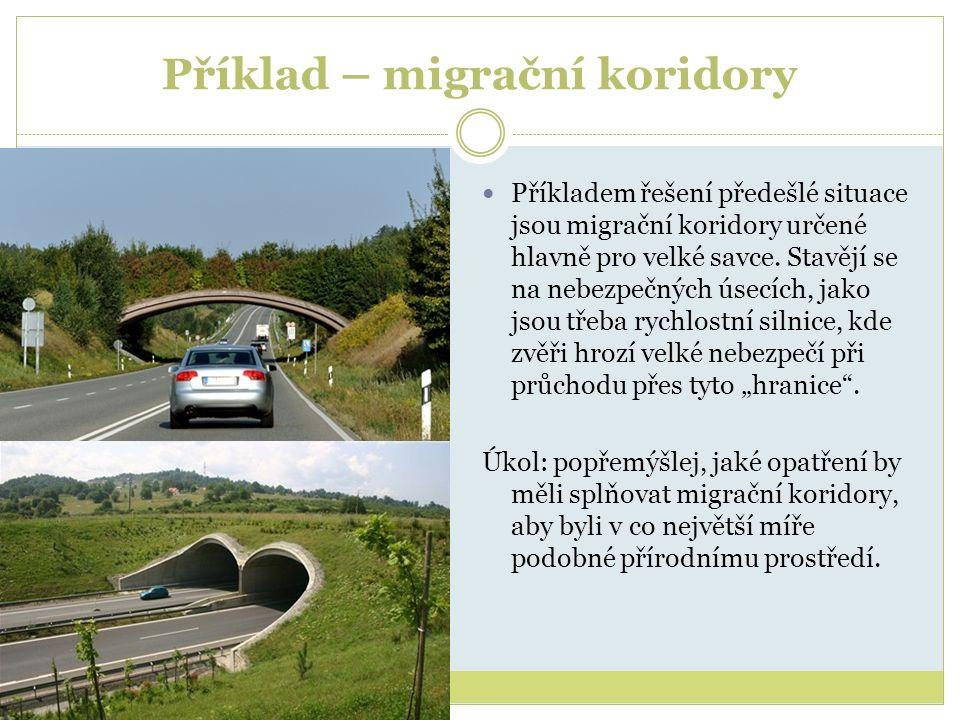 Příklad – migrační koridory Příkladem řešení předešlé situace jsou migrační koridory určené hlavně pro velké savce. Stavějí se na nebezpečných úsecích